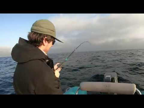 Cape Town Fishing Trip For Katonkel (Atlantic Bonito)