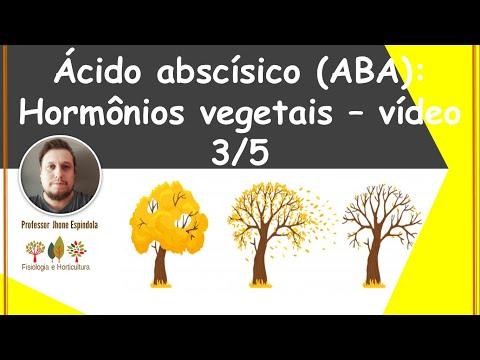 Ácido-abscísico-(aba):-desenvolvimento-e-dormência-de-sementes---efeitos-fisiológicos---agro-e-bio