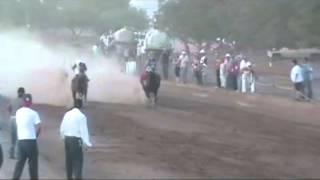 carrera de caballo en sahuarita tucson arizona
