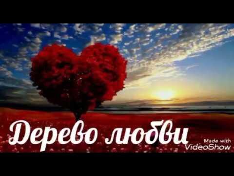 Дерево любви. Стихи Ирина Дарнина.