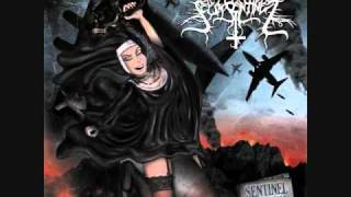 Scum Sentinel - Fucking a nun with a fistful of anger.wmv