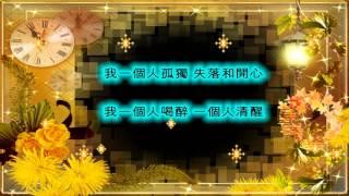 一個人習慣一個人 - 王小婉 (歌詞)