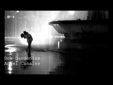 Angel Canales - Dos Gardenias