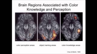 Alfonso Caramazza - Levels of Representation in the Mind/Brain Thumbnail