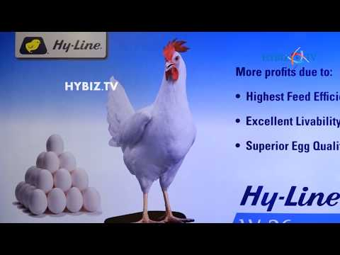 Srinivasa Group Announces A Strategic Partnership With Hy Line International  At Hyderabad