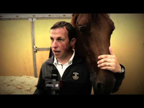 Longines Global Champions Tour 2013 - Wiesbaden - In Focus: Gerco Schroder's stallion London