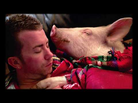 Esther the Wonder Pig | Steve Jenkins & Derek Walter | TEDxStLawrenceCollege