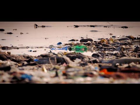 WIOMSA Marine Litter Monitoring Programme