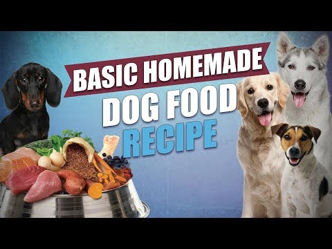 Basic Homemade Dog Food Recipe That's Easy To Make