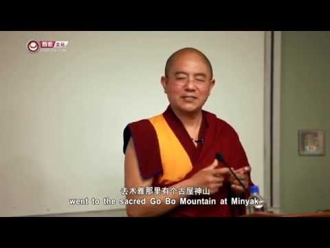 Visions and Prophecies in Tibetan Buddhism
