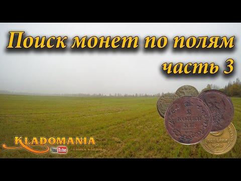 Поиск монет по полям часть 3. Поиск по старине. Полушка Анны Иоанновны