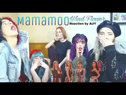 "Mamamoo ""Wind Flower"" MV Reaction With A.U.Y. (IMPORTANT UPDATES AT THE END)"