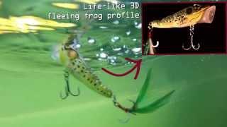 LIVETARGET жаба Поппер