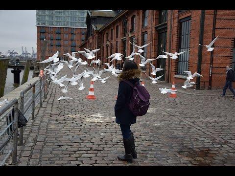 Ni Navigator ตอน Top ten in Hamburg