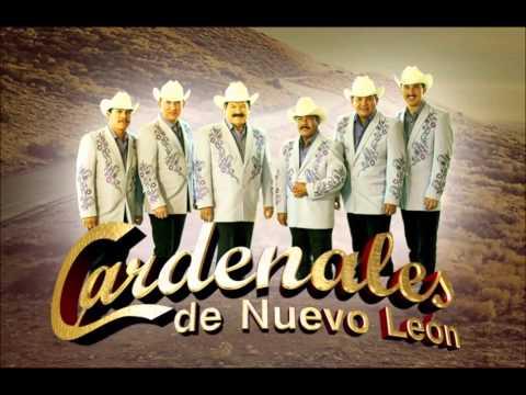 Los Cardenales de Nuevo Leon 2014