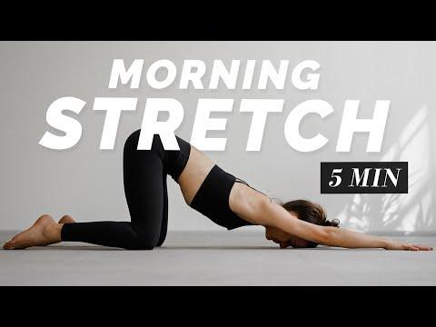 5 Min. Morning Stretch   Full Body Flexibility Routine for Beginner