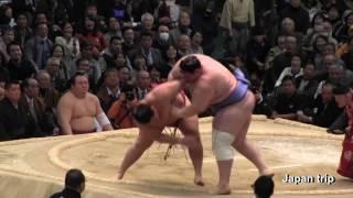 2017大相撲春場所での遠藤 vs 碧山の取組。