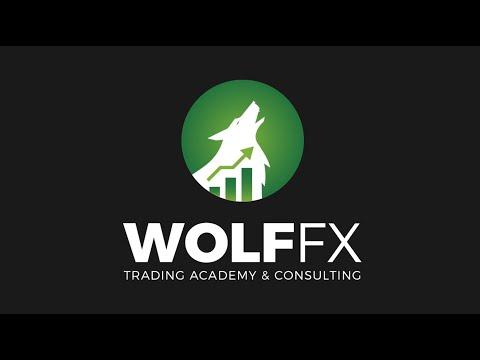 forex-animated-logo---wolffx