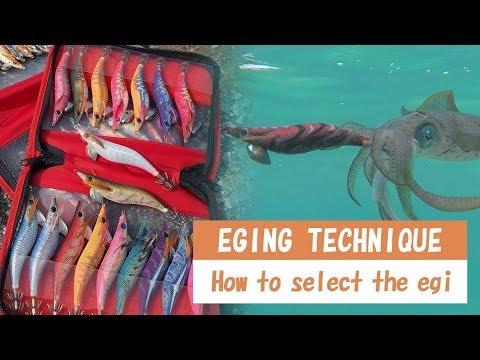 This Is How To Select The Egi With No Hesitation From YAMASHITA EGING Master Eisuke Kawakami.