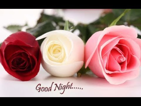 Good Night Sweet Dreams Beautiful Pictures Quotes Whatsapp Video