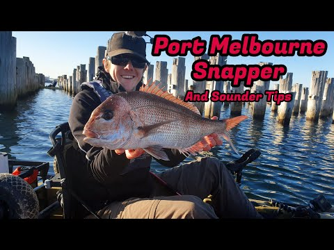 Port Melbourne Snapper And Sounder Tips