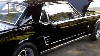 1966 Ford Mustang Coupe For Sale