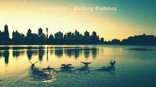 Equalibrum - Walkin Distance