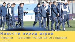 Украина Эстония последние новости перед игрой репортаж со стадиона