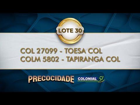 LOTE 30   COL 27099, COLM 5802