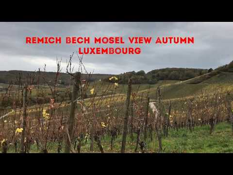 Remich Bech Mosel View Autumn Luxembourg
