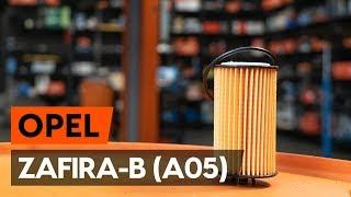 Kaip pakeisti Alyvos filtras OPEL ZAFIRA B (A05) - vaizdo vadovas