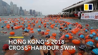 Hong Kong cross-harbour swim 2018: 3,600 take to the water