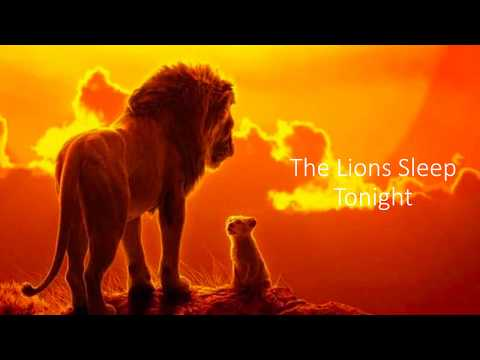 The Lion Sleeps Tonight Lion King Lyrics Video - Billy Eichner & Seth Rogen