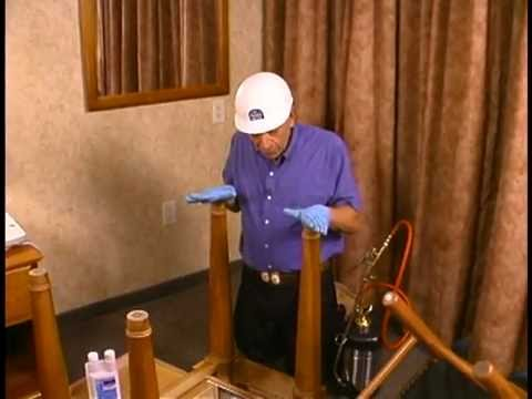Bed Bug Inspection in Bedroom and Living Room    Bed Bug Treatment New Jersey