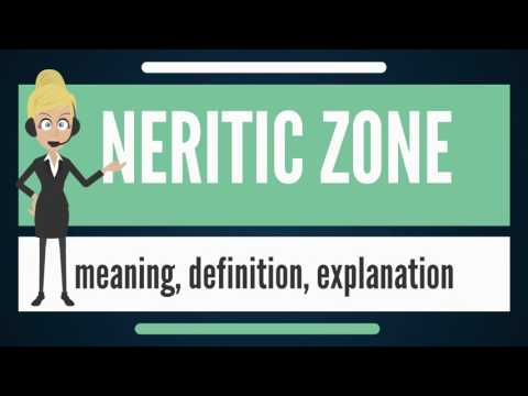 What is NERITIC ZONE? What does NERITIC ZONE mean? NERITIC ZONE meaning & explanation