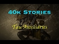 40k Stories: The Tau Auxiliaries