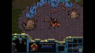 StarCraft Broodwar - High Level Fish Team Play Series #9