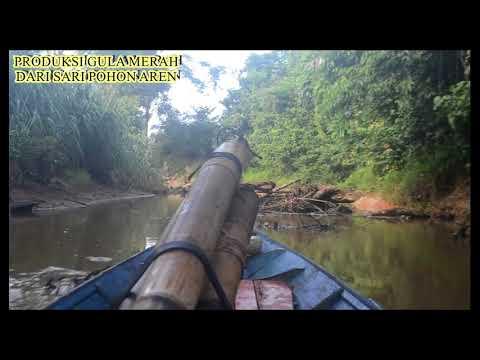 Potensi di Desa Sedulang, Kec  Kota Bangun, Kab  Kutai Kartanegara, Kalimantan Timur