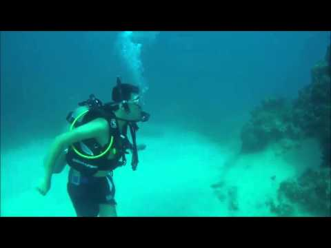 First Dive in Georgetown Grand Cayman Islands
