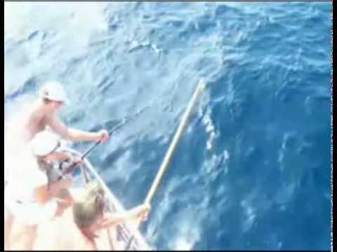 Destin Florida Fishing | Snorkeling | Pelican Adventures
