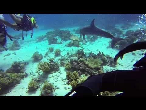 Diving Adventure Hurghada , Egypt
