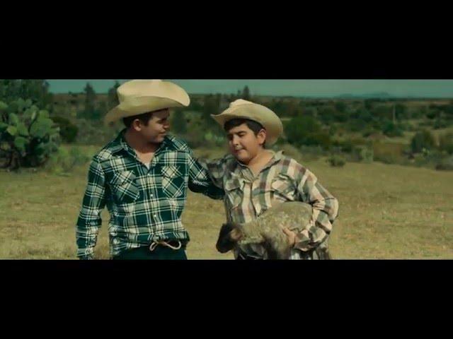 DEL NEGOCIANTE - Los Plebes del Rancho de Ariel Camacho (Video Oficial)   DEL Records