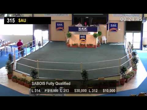 2016 Adelaide Magic Millions Yearling Sale Day 3