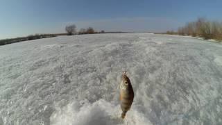 Зимняя рыбалка. Закрытие сезона.