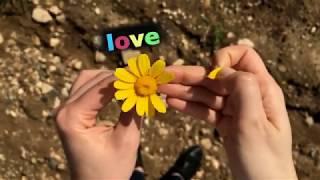 Mentha- Nothing but a rose (Nincs egyebem)