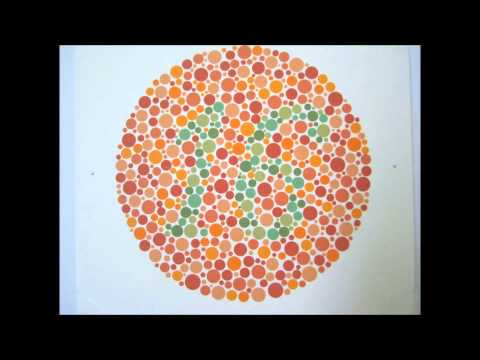 Ishihara's Test For Colour Deficiency - 24 Plates Edition