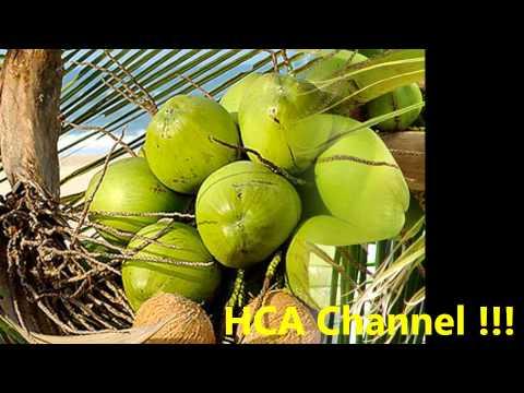 agua de coco para limpiar los riñones