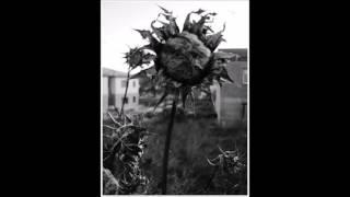 La muerte de la Primavera