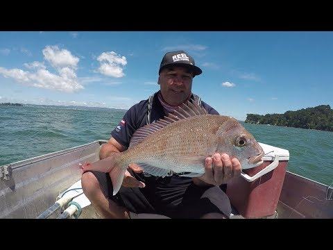 Fishing An Old Haunt (Waitemata Harbour) In The Little Tin With The Sis