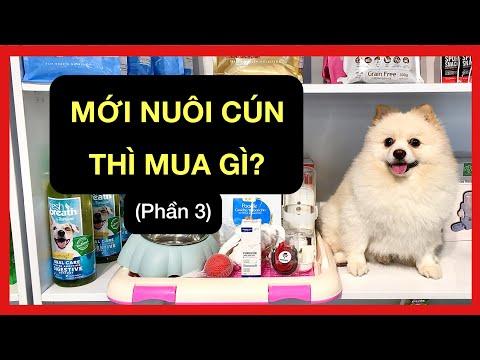 Vật dụng cần tham khảo thêm cho người mới nuôi cún | Huấn luyện cơ bản Bossdog